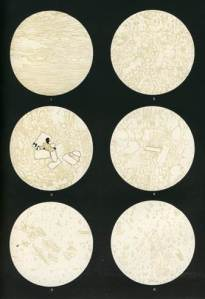 Drawings of views of 1883 Krakatoa pumice and ash samples in thin section, under a microscope.  The pumice samples are mainly made of glass (very pale colour) with gas bubbles.  The top 4 images are each about 1 cm across, and show the texture of lumps of pumice.  The bottom two images are each about 1 mm across, and show the 'ash' that fell over a thousand miles away from Krakatoa, onto the ship Arabella (left), and the 'ash' formed by grinding up a sample of pumice.